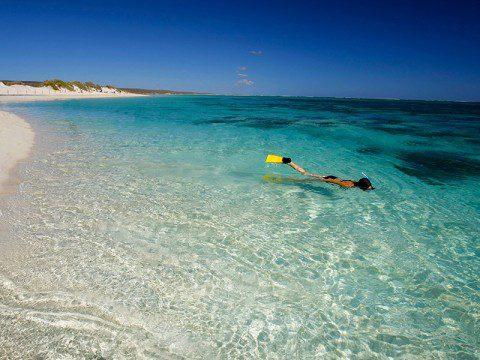 Snorkla i Australien